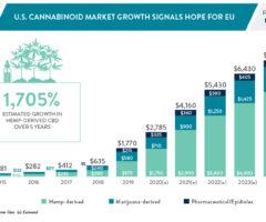 À mesure que le marché du CBD se développe, les détaillants cherchent à s'implanter sur les marchés européens du cannabis
