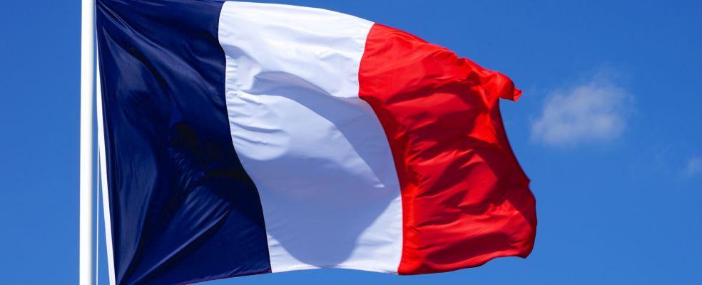 Publication du décret autorisant l'expérimentation du Cannabis thérapeutique en France