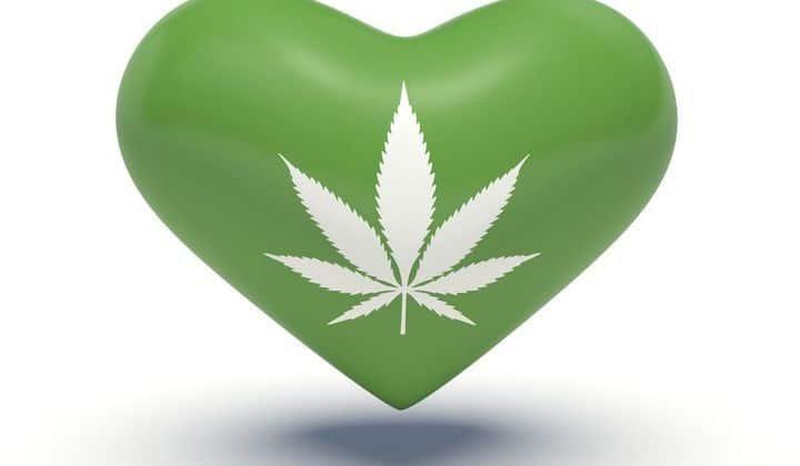 Qu'est-ce que le cannabis ?
