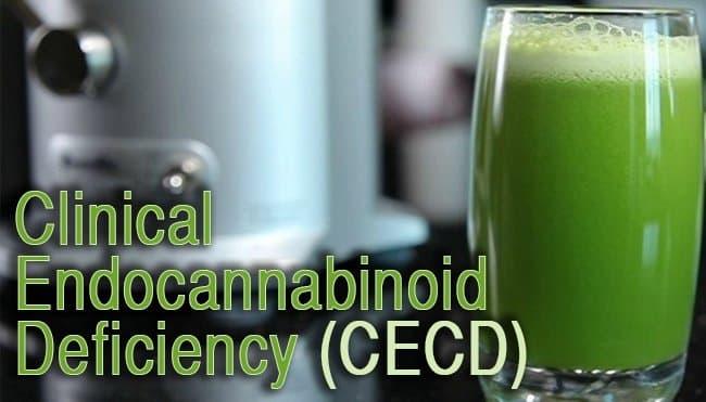 Comprendre la carence clinique en endocannabinoïdes (CECD)