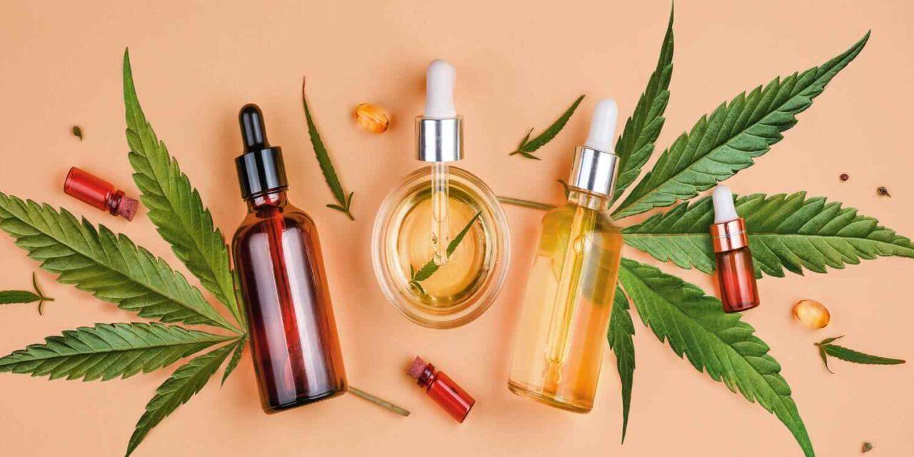 Les cannabinoïdes et la peau : focus sur l'absorption