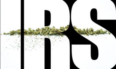 L'audit de l'IRS qui fait trembler l'industrie du cannabis aux USA !