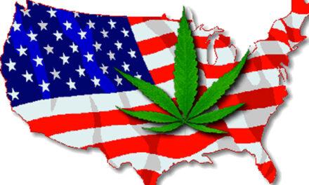 La légalisation de la marijuana se profile à l'horizon aux USA