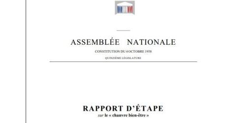 Le rapport parlementaire sur le chanvre bien-être