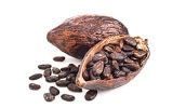 cacacochocolat-cbd