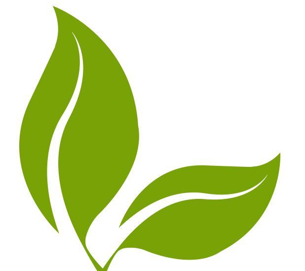 CBD.FR votre partenaire pour vos achats de chanvre et de CBD en ligne